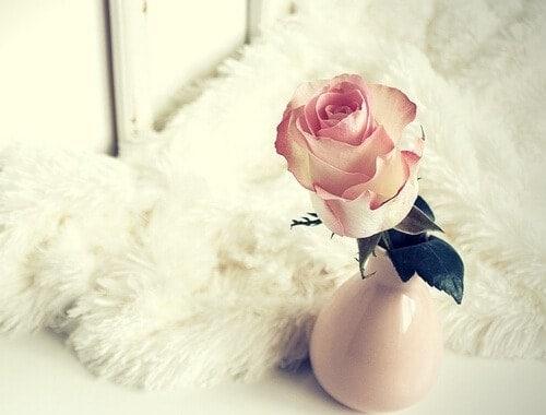romantic_ideas-valentine's_day_ideas
